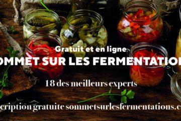 sommet sur les fermentations, sanspour100plaisirs.com